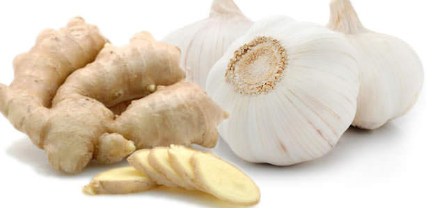 The ginger and garlic for loosing weight