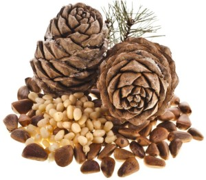Pine nuts: nutritional value