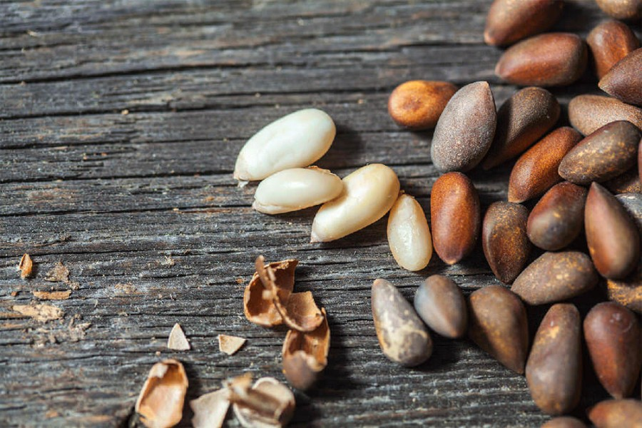 Healthy qualities of the pine nut