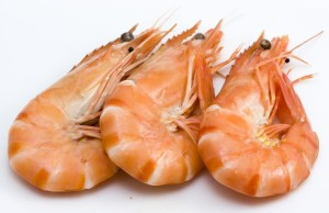 How to cook shrimps?