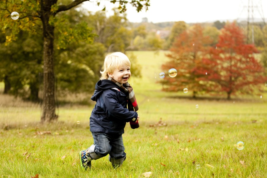 rosehips for immunity