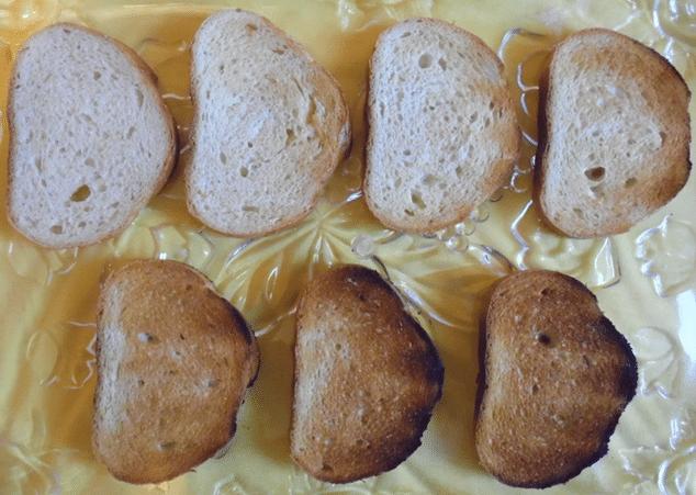 toasts of VT-1580 by VITEK
