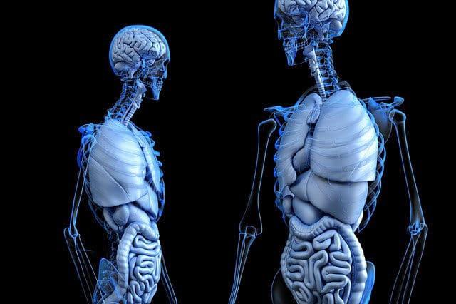 naturally strengthen your bones