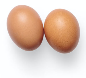 two boiled eggs for your 4 week egg diet